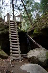 The ladders at Turkey Run State Park.